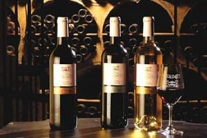 Vignette accueil vins from Clos de Verdot