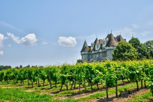 Vineyard and Castle of Monbazillac